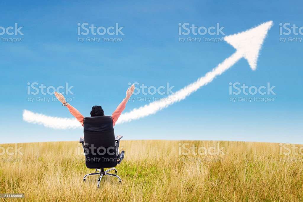 Businessman success concept and arrow sign at wheat field stock photo