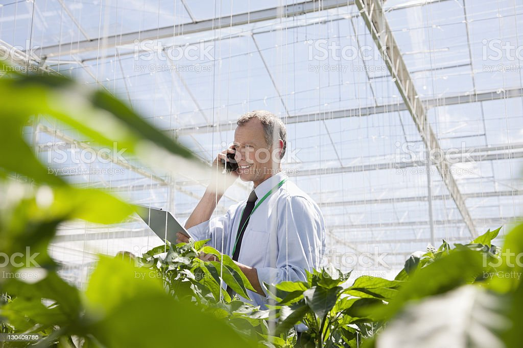Businessman talking on cell phone in greenhouse royalty-free stock photo