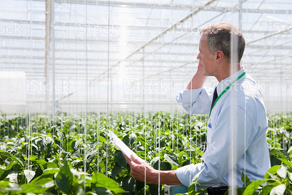 Businessman talking on cell phone in greenhouse stock photo