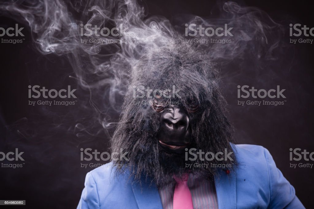 businessman wearing gorilla mask stock photo