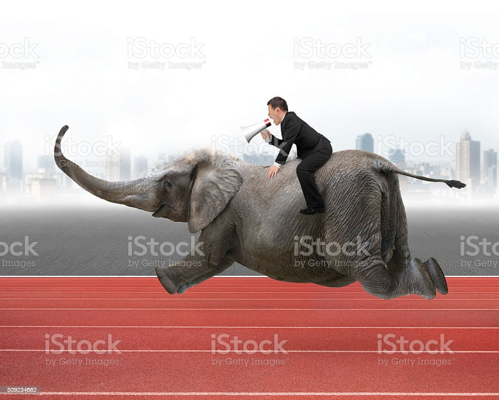 Businessman with using speaker riding on elephant stock photo