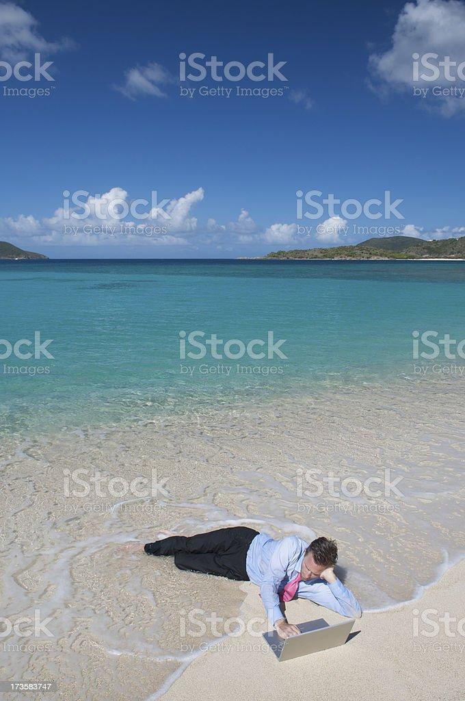 Businessman Working Ashore royalty-free stock photo
