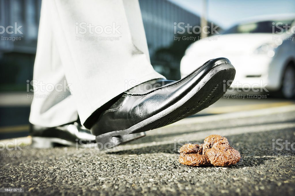 Businessman's foot nearing a messy pile of dog poo royalty-free stock photo