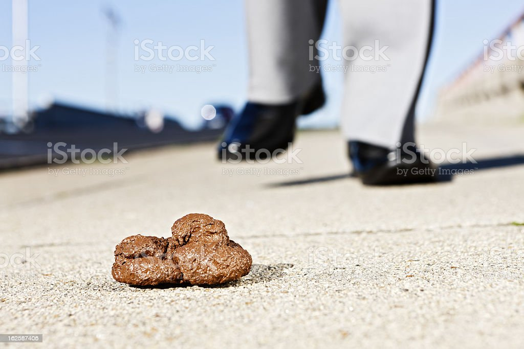 Businessman's smartly shod foot approaching a pile of dog feces royalty-free stock photo