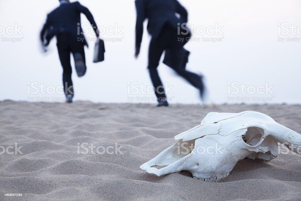 Businessmen running away from animal skull in middle of desert stock photo
