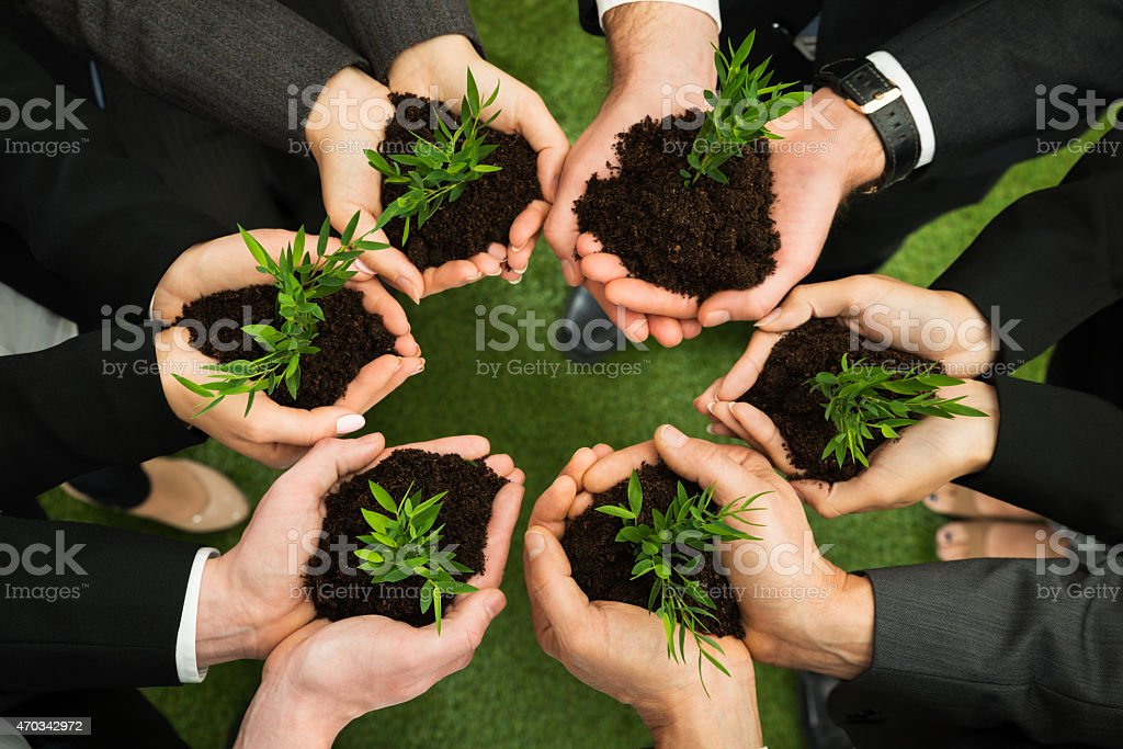 Businesspeople Hands With Plant And Soil stock photo