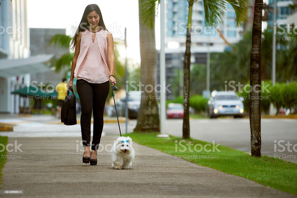 Businesswoman Commuting To Office With Her Dog stock photo