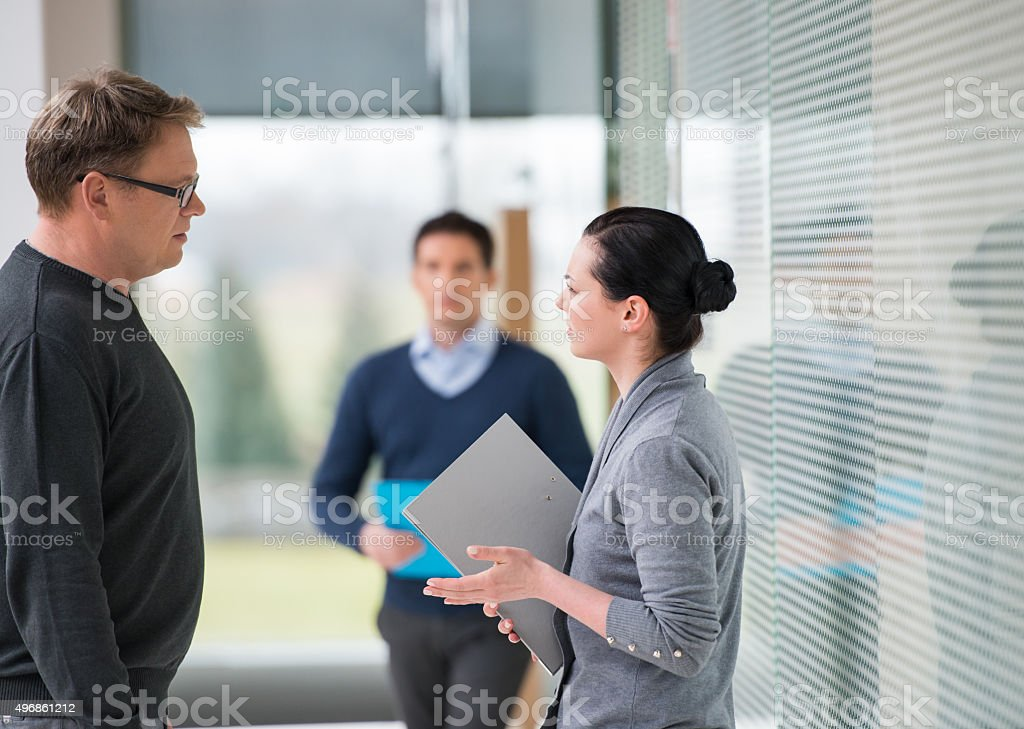 Businesswoman Consulting A Partner stock photo