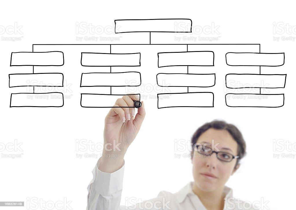 Businesswoman drawing an organization chart stock photo