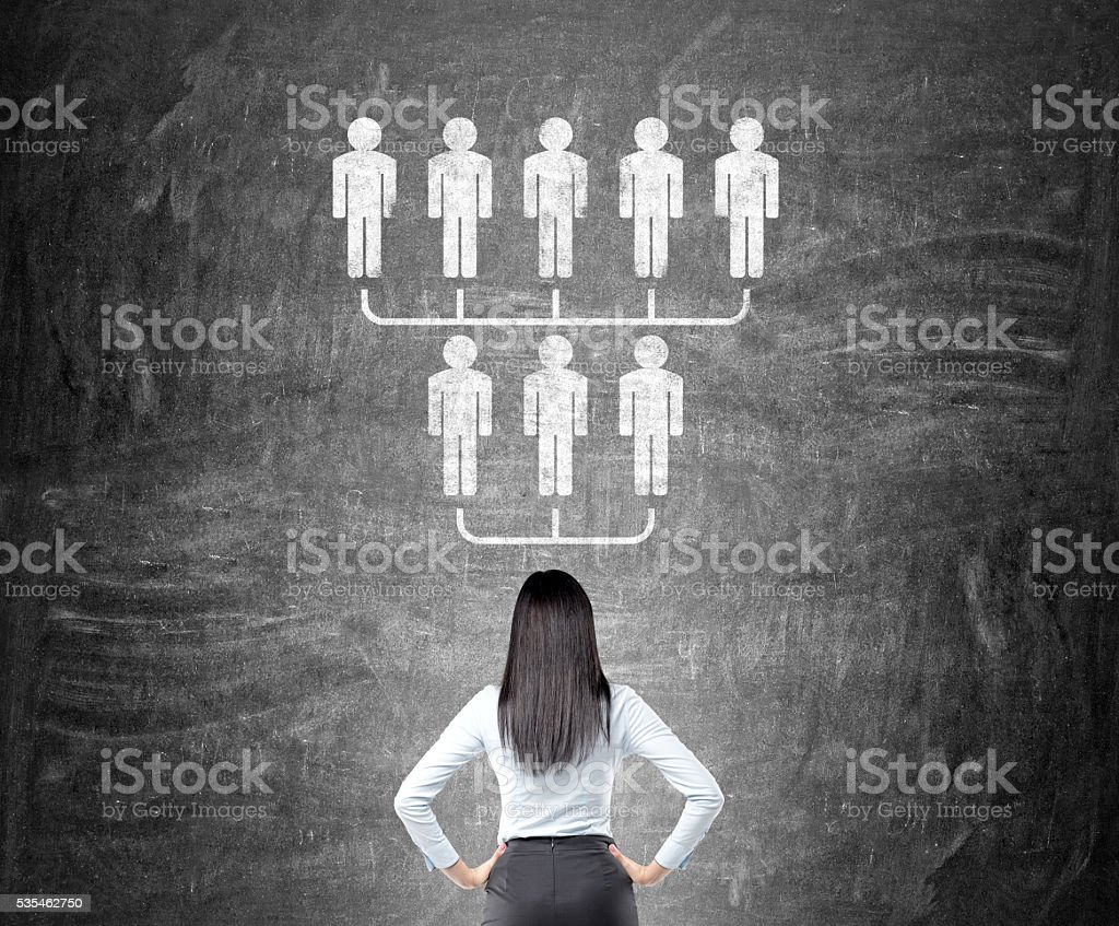 Businesswoman looking at hierarchy sketch stock photo