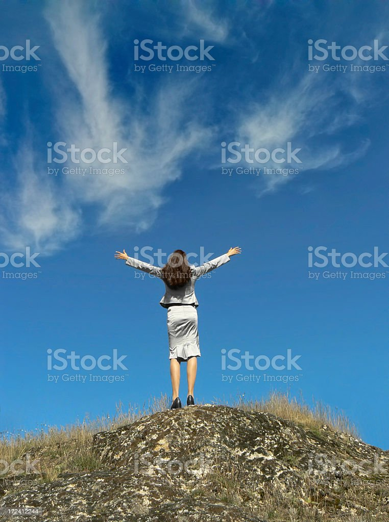 Businesswoman on the top. royalty-free stock photo