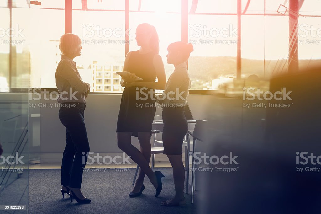 Businesswomen discussing in meeting against window stock photo