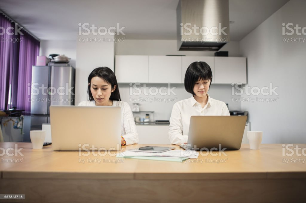 Businesswomen working on laptop in home stock photo