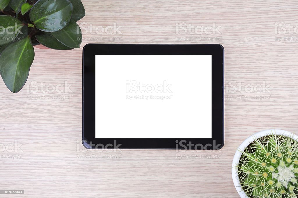 bussiness:digital tablet, notebook and plant stock photo