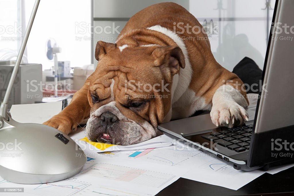 Busy day in the office stock photo