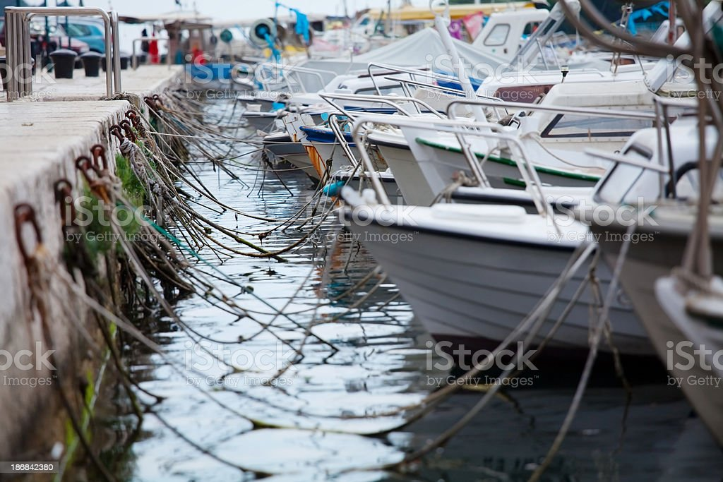 Busy Marina stock photo