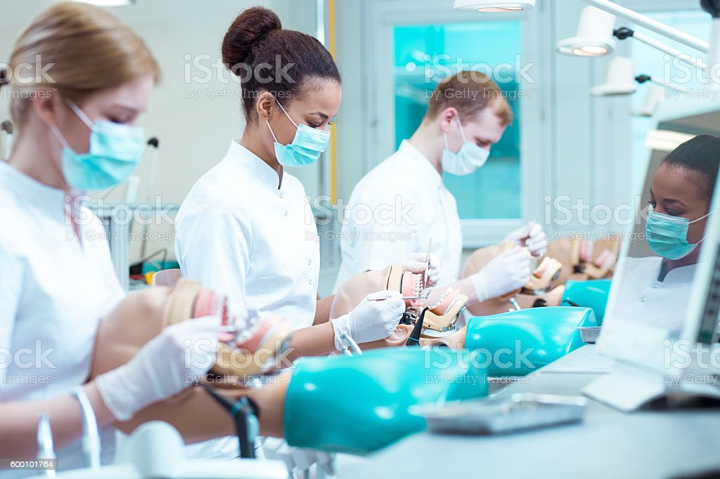 Busy medicine students on classes stock photo