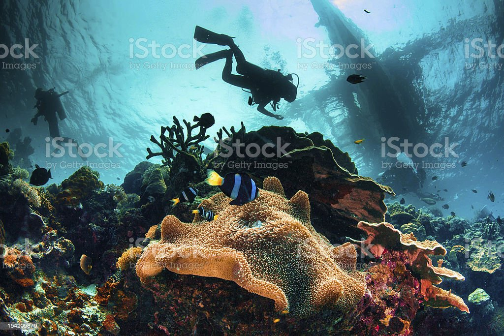 busy sea scape stock photo