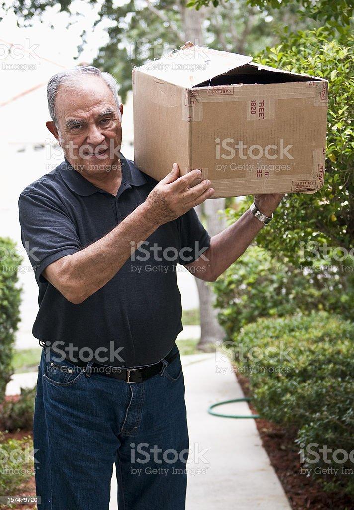 Busy Senior Carrying a Heavy Box royalty-free stock photo