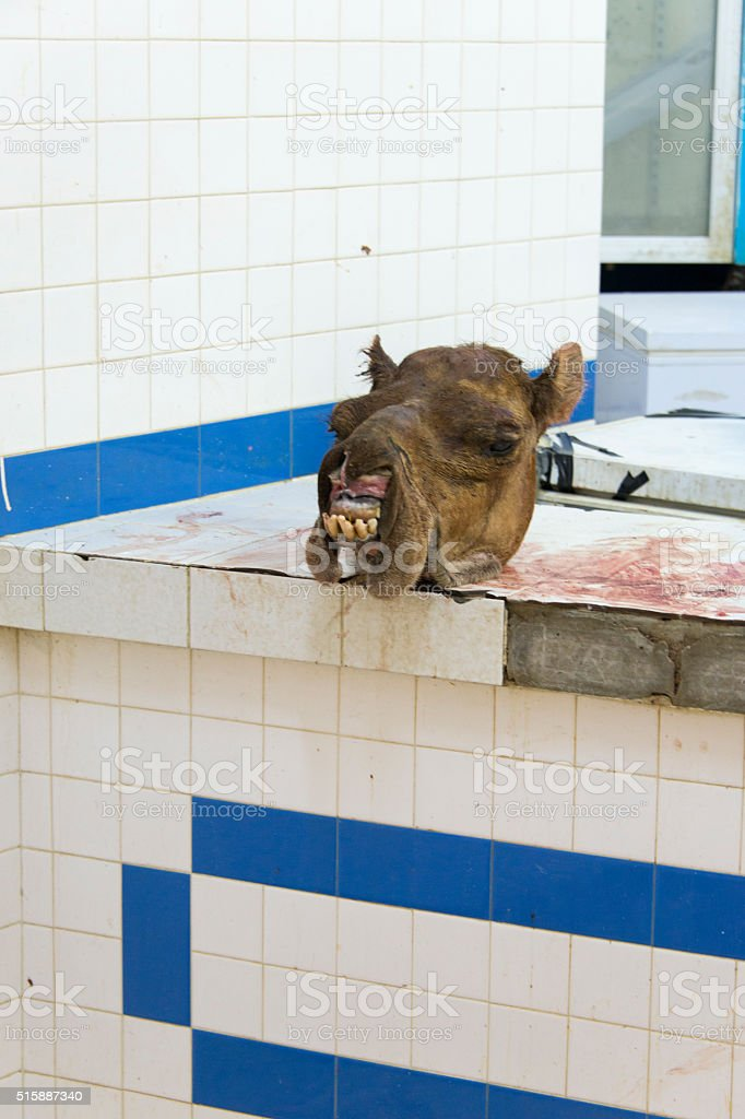 Butcher's shop selling camel stock photo
