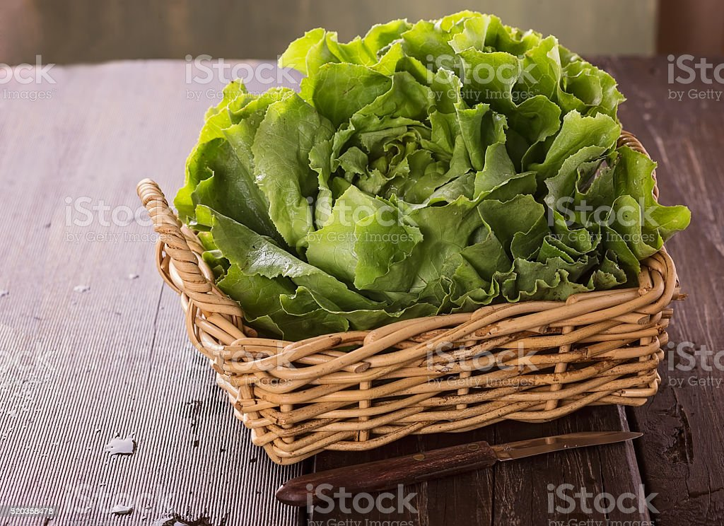 Butter lettuce over wooden rustic table stock photo