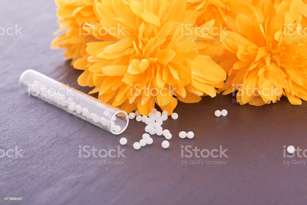 buttercup flower homeopathic  pharmacy royalty-free stock photo