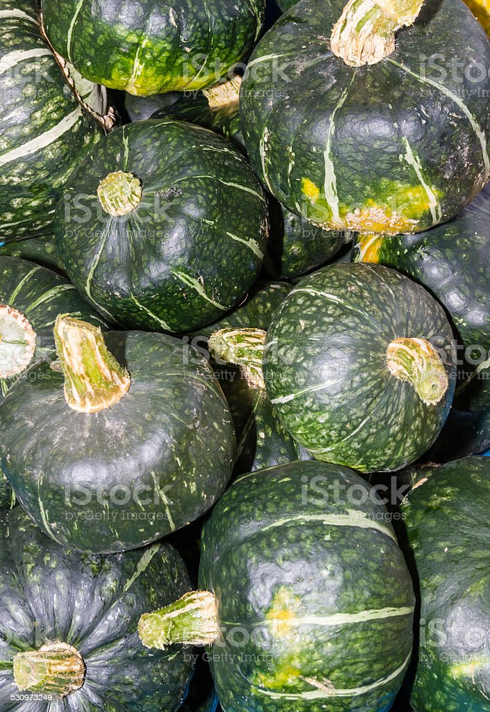 Buttercup winter squash on display stock photo