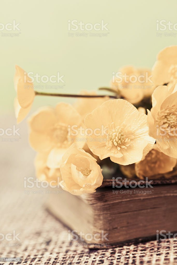 Buttercups on Prayer Book royalty-free stock photo