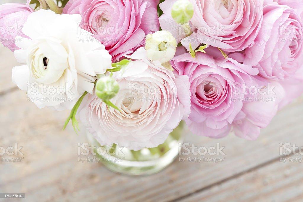 Primaveras foto royalty-free