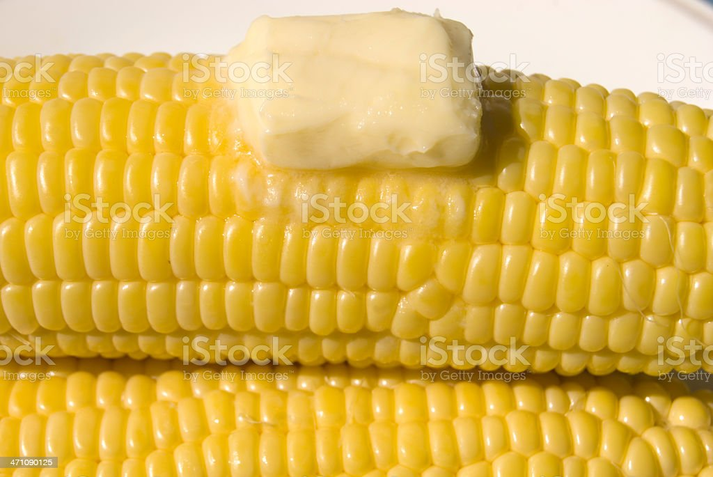 Buttered Corn on the Cob royalty-free stock photo