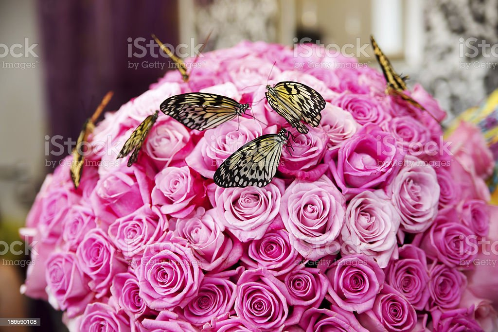 Butterflies on a bouquet of pink roses royalty-free stock photo