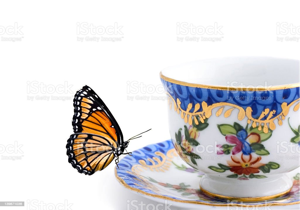 butterfly on a tea cup royalty-free stock photo