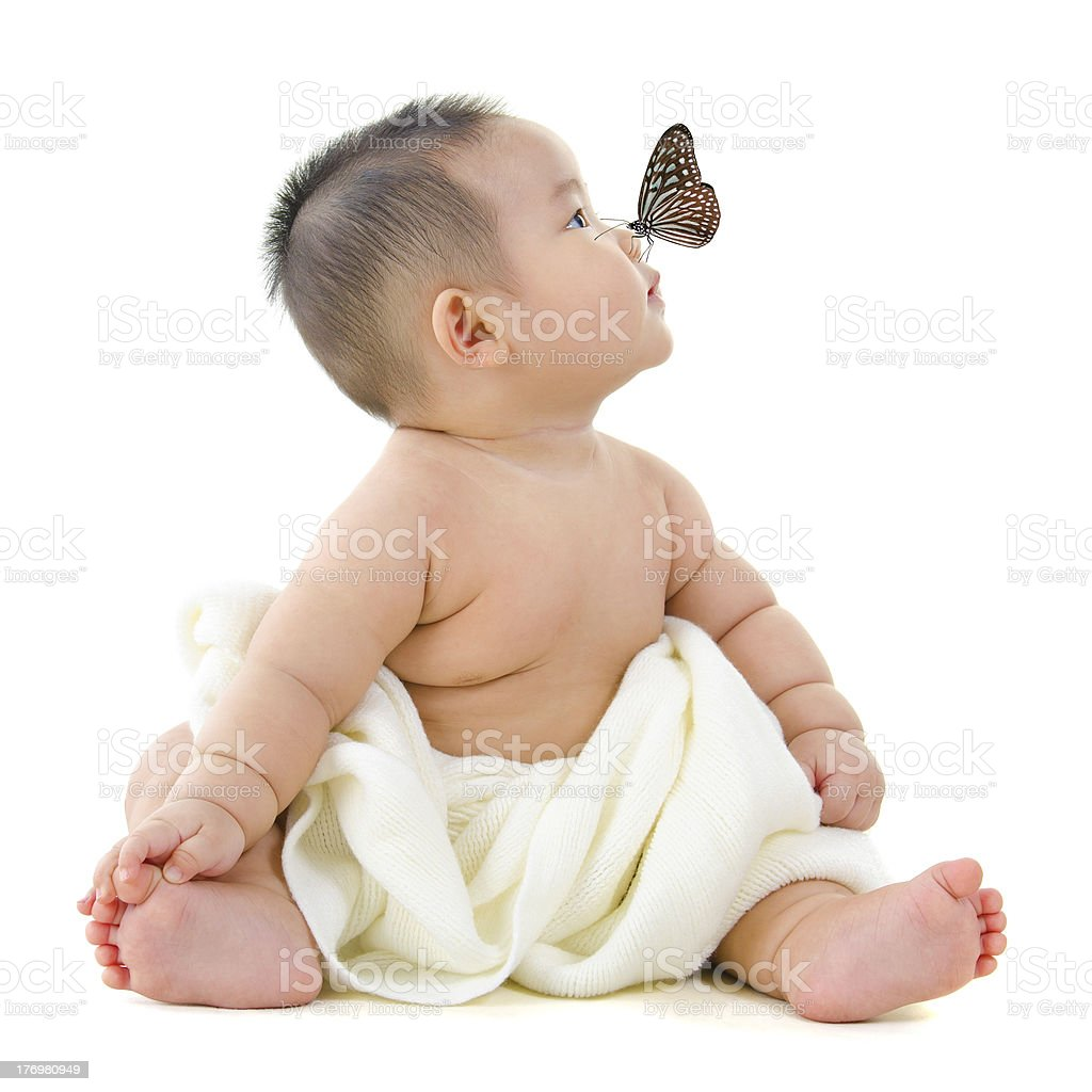 Butterfly on baby nose royalty-free stock photo
