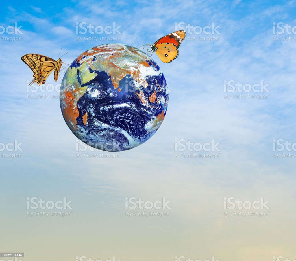 Butterfly on planet Earth.Elements of this image furnished by NASA stock photo