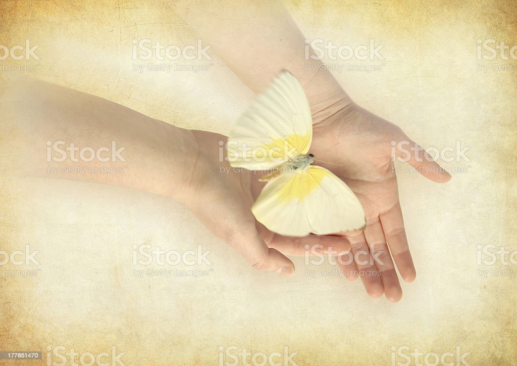 Butterfly on woman's hand. royalty-free stock photo