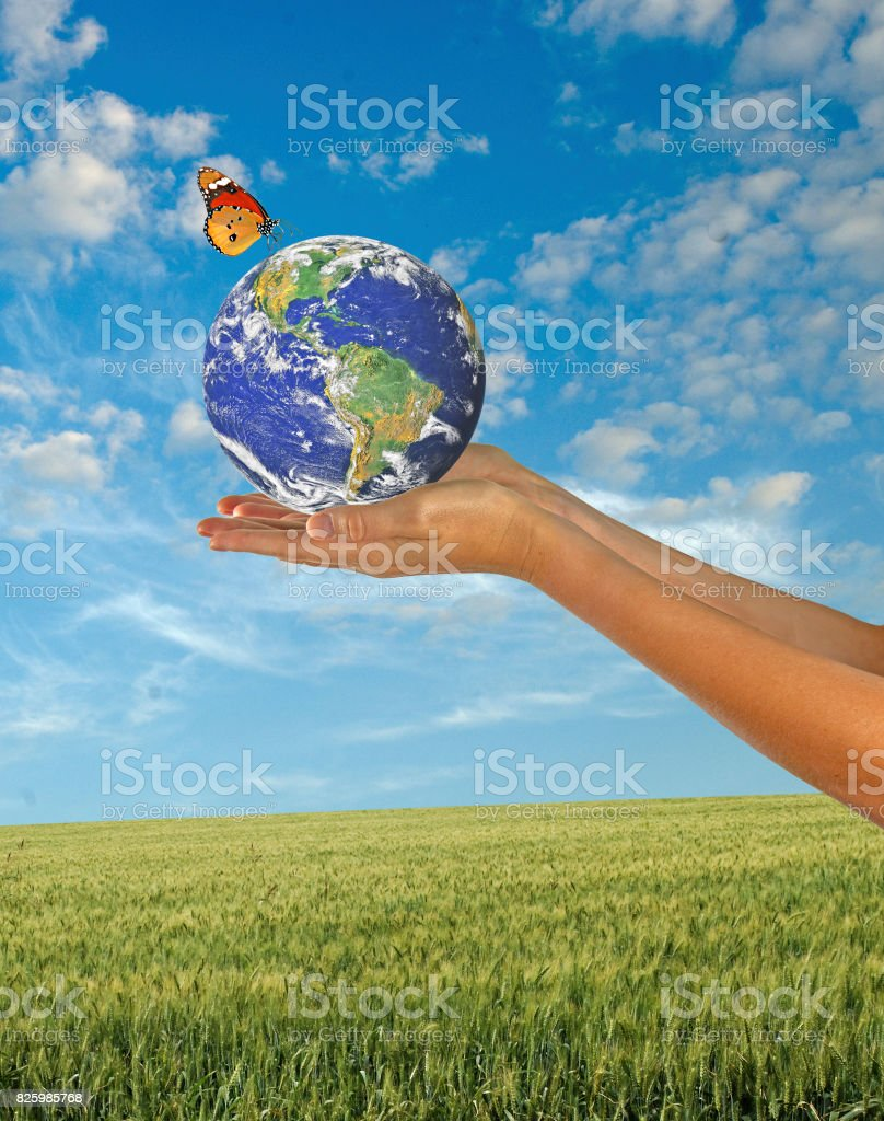 Butterfly sitting on Earth.Elements of this image furnished by NASA stock photo