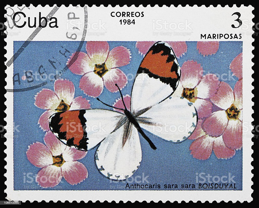 Butterfly stamp stock photo