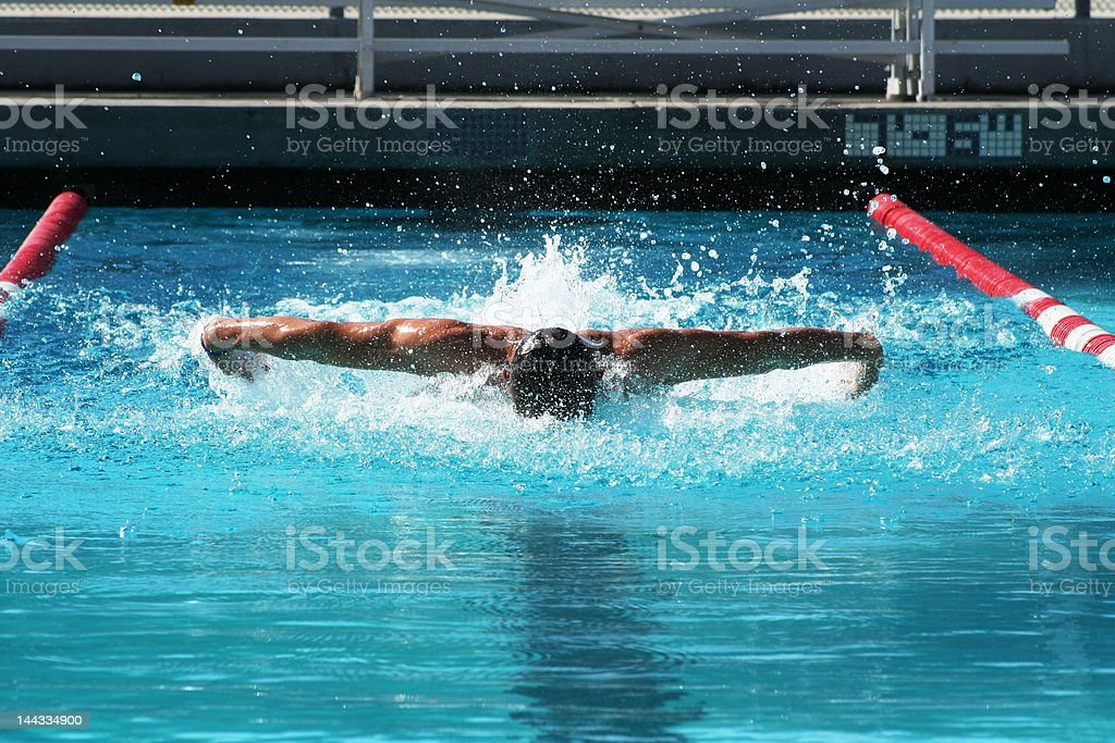 Butterfly Stroke royalty-free stock photo