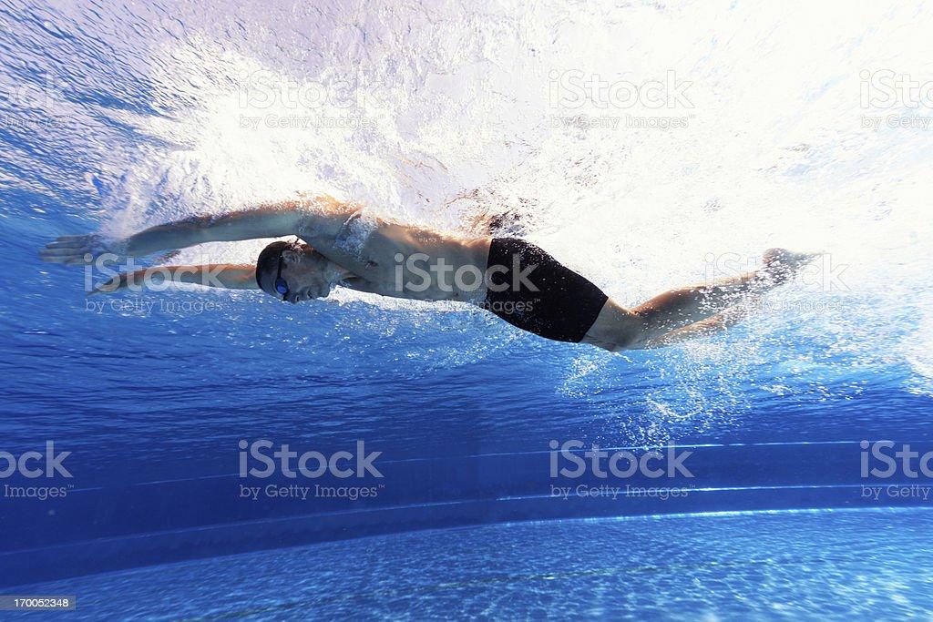 butterfly swimmer underwater stock photo