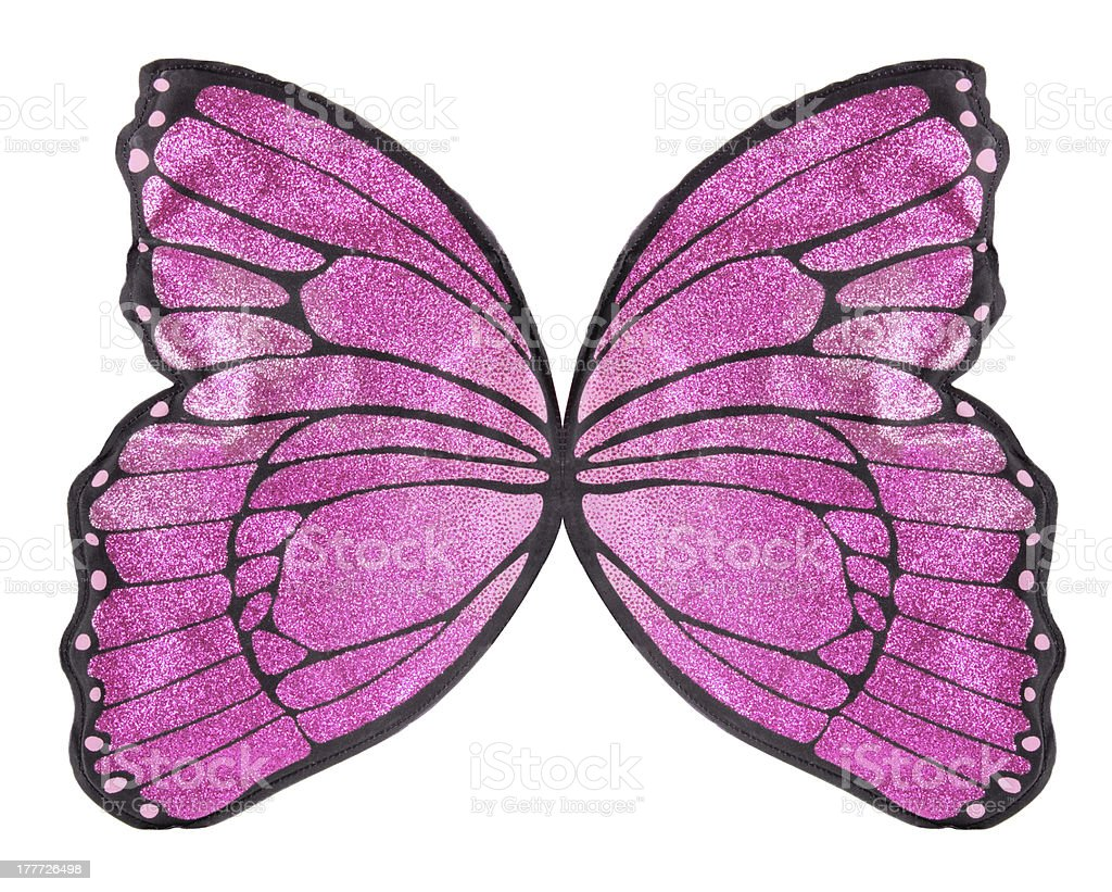 Butterfly Wings stock photo