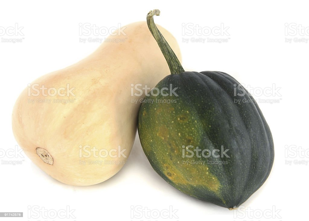 butternut and acorn squash royalty-free stock photo