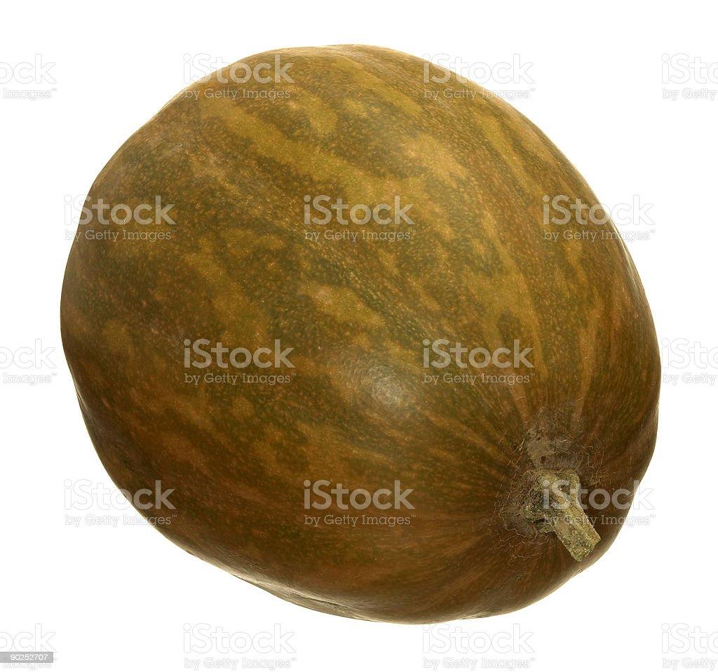 butternut pumpkin stock photo