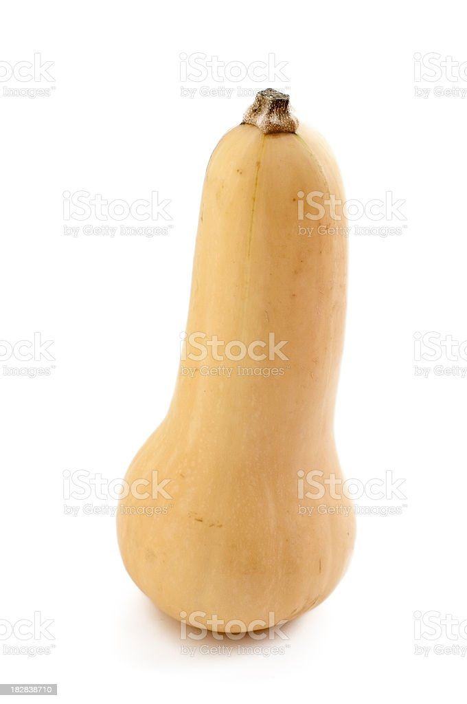 Butternut Squash Isolated on White Background ( serie ) royalty-free stock photo