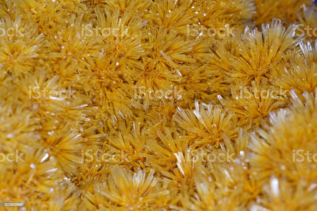 butterscotch selenite crystals stock photo