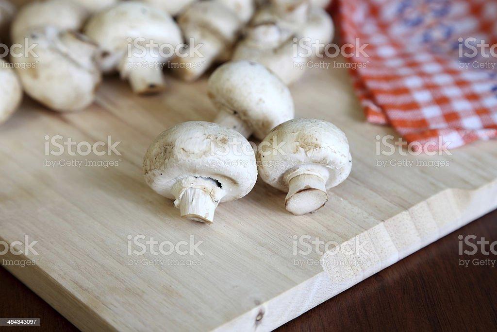 Button mushroom royalty-free stock photo