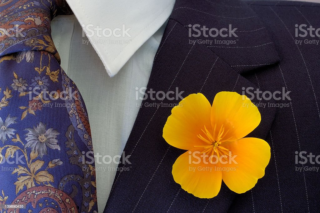 Buttonhole royalty-free stock photo