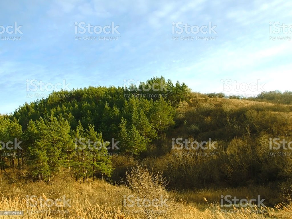 Buzau stock photo