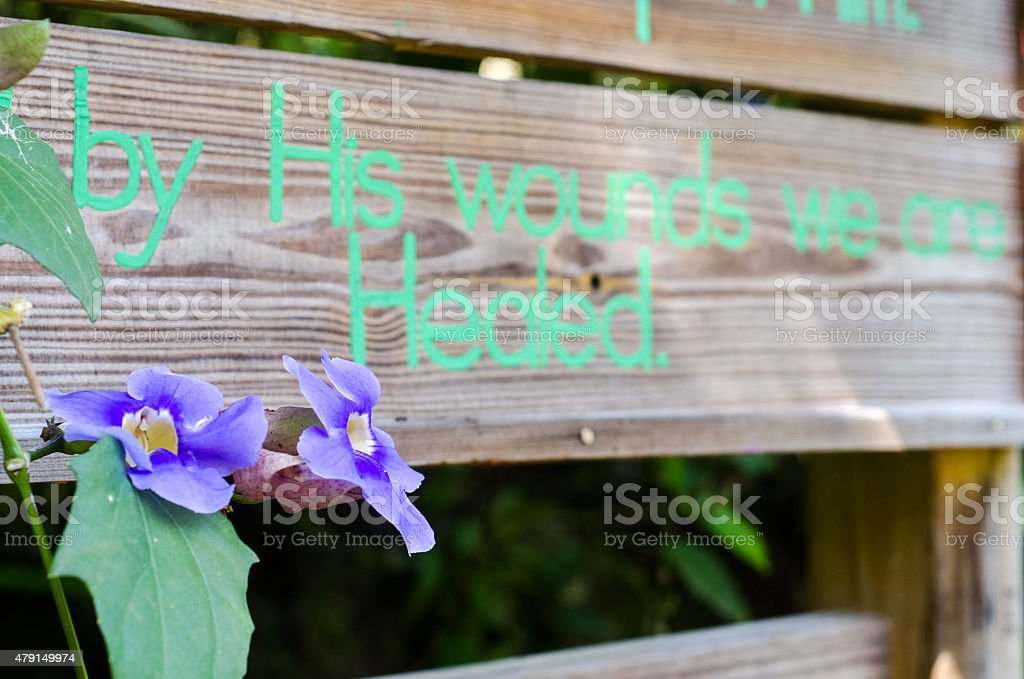 by his wounds we are healed flower sign concept stock photo