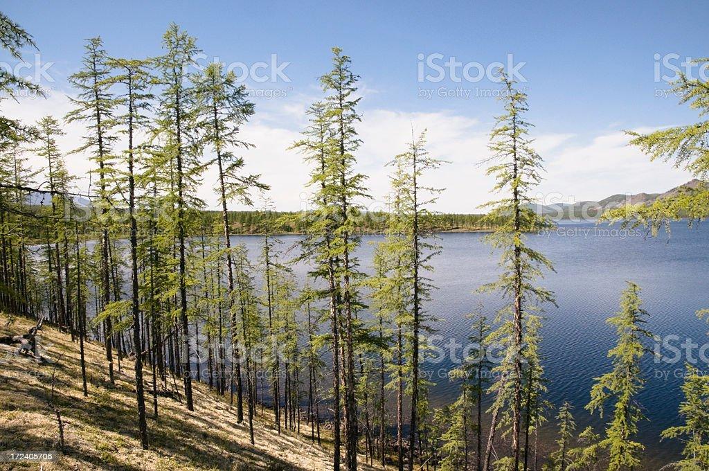 By the lake Dvargalaak royalty-free stock photo