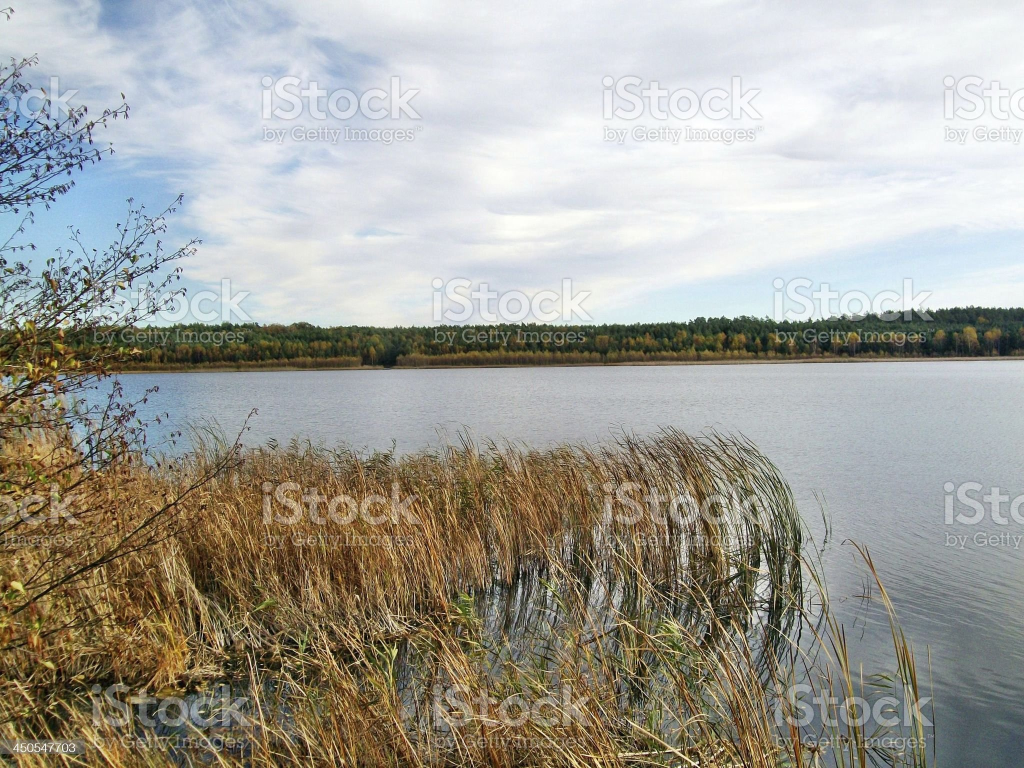By the lake in autumn royalty-free stock photo